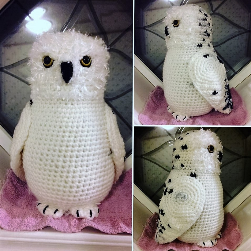 Boron the Snowy Owl | Owl crochet patterns, Crochet projects, Owl ... | 820x820